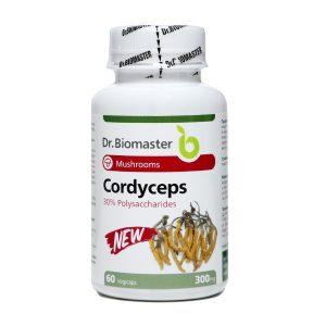 Кордицепс – екстракт (30% полизахариди)